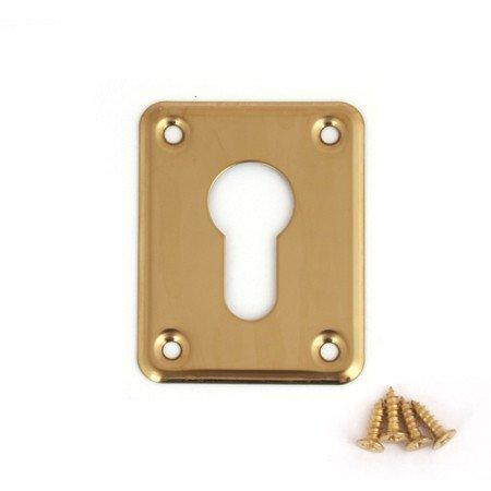 Накладка декоративная Aверс DP-С-01 золото (9145)
